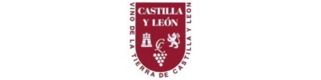 IGP VT CASTILLA Y LEÓN